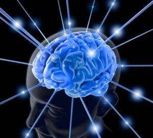 Beynimiz ve bilinç olgusu